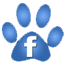 Waggin Tails Pet Services